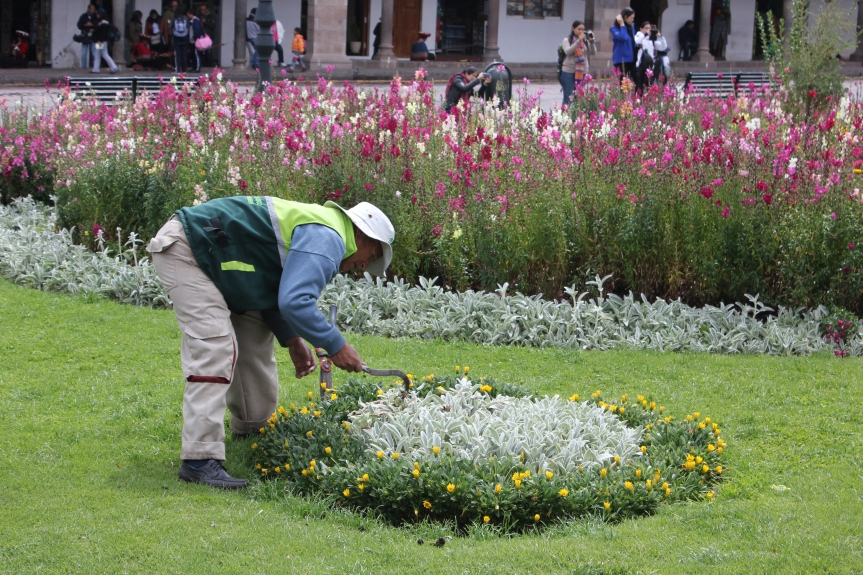 Gardener in the Plaza